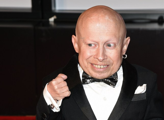 PHOENIX, AZ - MARCH 28: Actor Verne Troyer attends Muhammad Ali's Celebrity Fight Night XXI at the JW Marriott Phoenix Desert Ridge Resort & Spa on March 28, 2015 in Phoenix, Arizona. (Photo by Ethan Miller/Getty Images for Celebrity Fight Night)