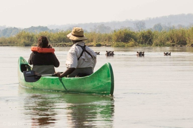 kayaking-hippos-river