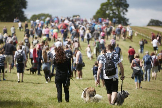 People walking dogs at DogFest