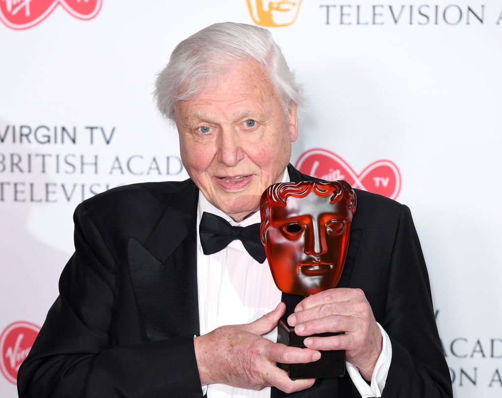 David Attenborough admits scariest animal he's ever faced is a human with a gun: 'Only humans cause problems'