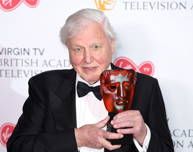 When does Sir David Attenborough's new TV series Dynasties