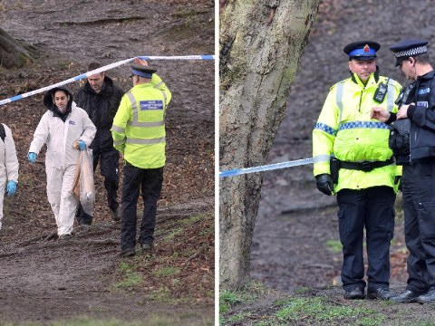 Newborn baby found dead in woods had two ribs missing