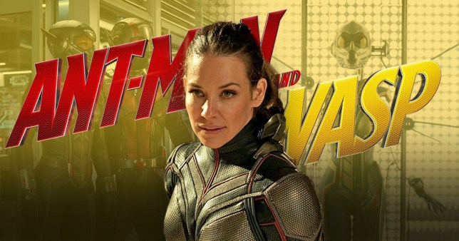 Evangeline Lilly teases Wasp and Captain Marvel union in Avengers 4