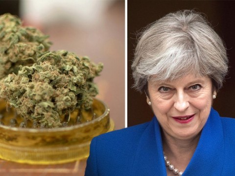 Sadly the government has said there's no plan to legalise cannabis