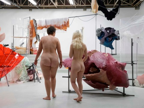 More than 100 naked people given private tour of art gallery