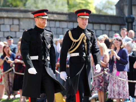 What did Prince Harry, the page boys and flower girls wear at the royal wedding?