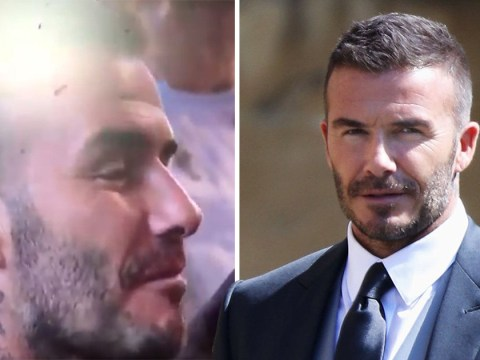 David Beckham breaks church etiquette by chewing gum like his life depends on it at royal wedding