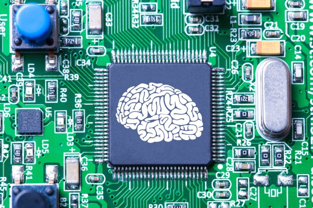Human brain in microchip.