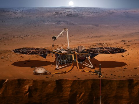 Nasa prepares to land spacecraft on a plain of Mars where extraterrestrial hunters claim to have seen an 'alien city' and 'crashed UFO'