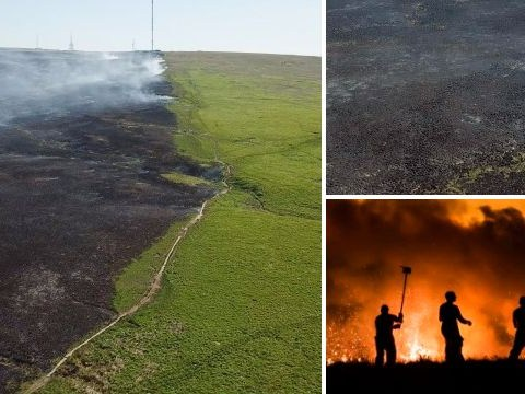 Aerial pictures show damage caused by wildfire during UK heatwave