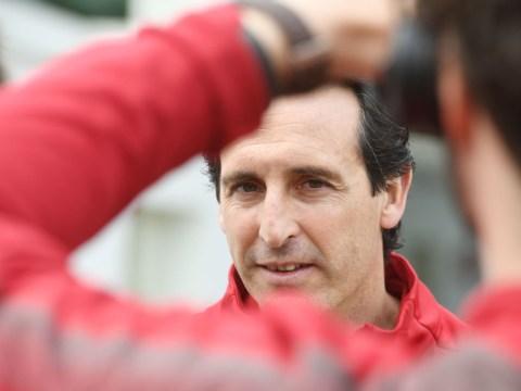 David Seaman urges Arsenal manager Unai Emery to make three key signings
