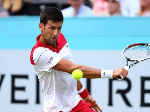 Novak Djokovic enjoys perfect Queen's return to set up Grigor Dimitrov clash