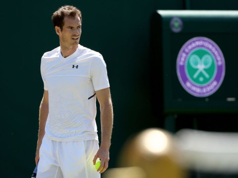 Andy Murray gives verdict on his Wimbledon chances