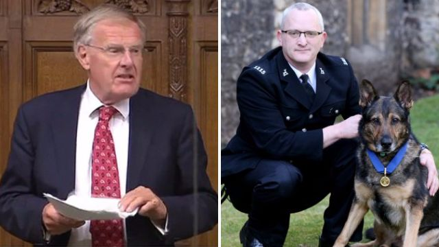 Tory MP blocks law to protect police dogs and horses from getting stabbed
