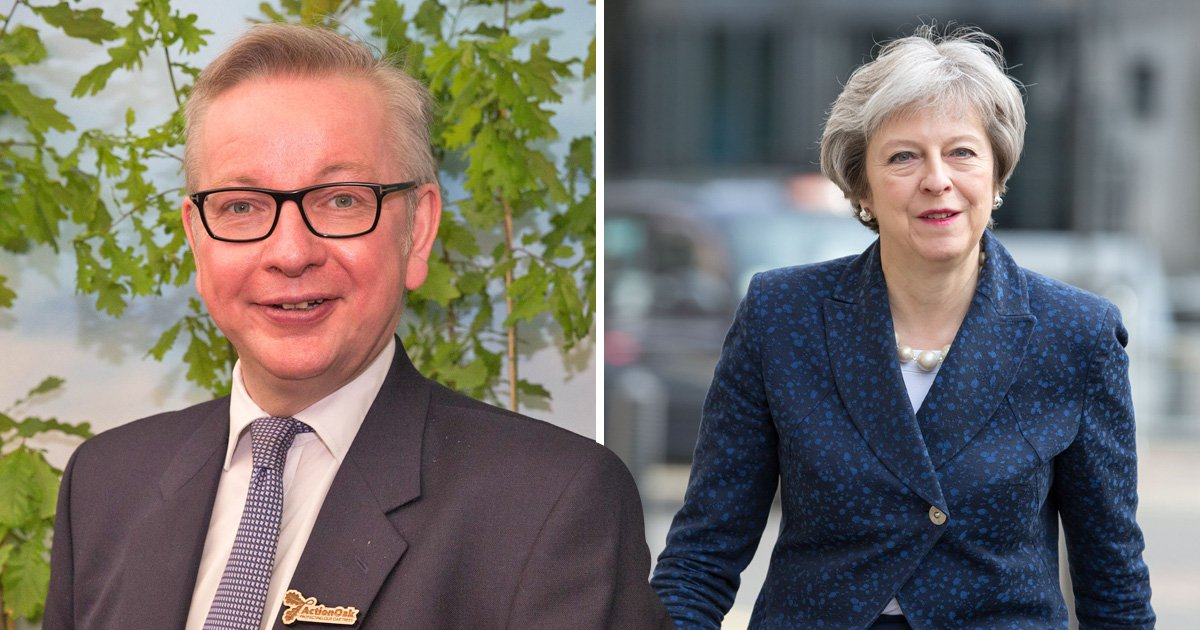 Ditch Theresa May for Michael Gove to get best Brexit deal, says party donor