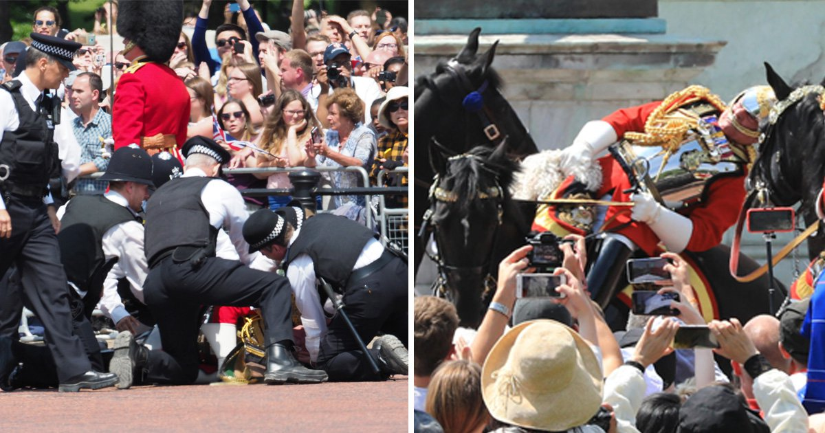 Field Marshal Lord Guthrie, 79, thrown from horse during Trooping the Colour