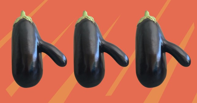 An aubergine with a penis