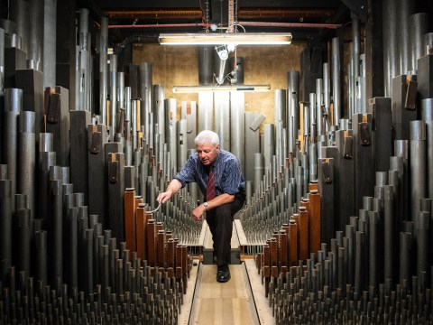 My odd job: I'm an organ tuner in charge of the 9,999 pipes of the organ at the Royal Albert Hall