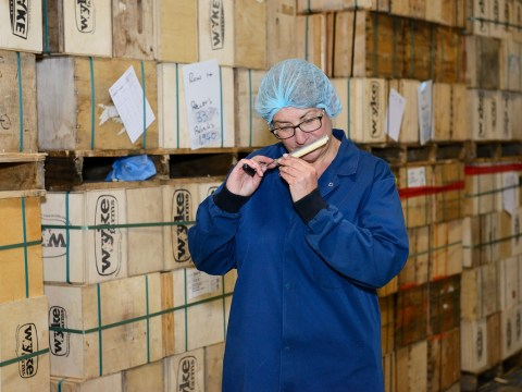 My odd job: I'm a cheese grader whose nose is insured for £5million
