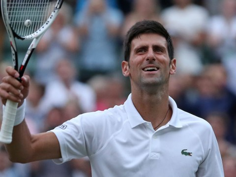 Andy Murray backs Novak Djokovic to beat Rafael Nadal and Roger Federer en route to Wimbledon title