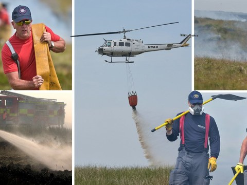 Arsonists set grass alight next to firefighters battling to put out wildfires