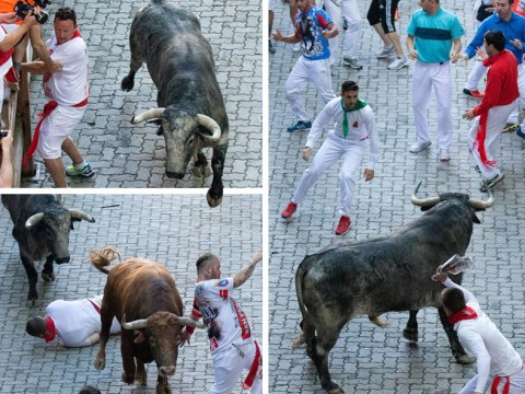 Four injured on day three of Spain's Running of the Bulls festival