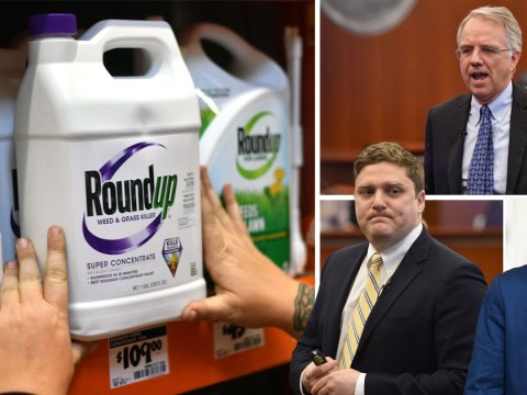 Experts allowed to testify in US courts that weed killer still sold in UK has links to cancer
