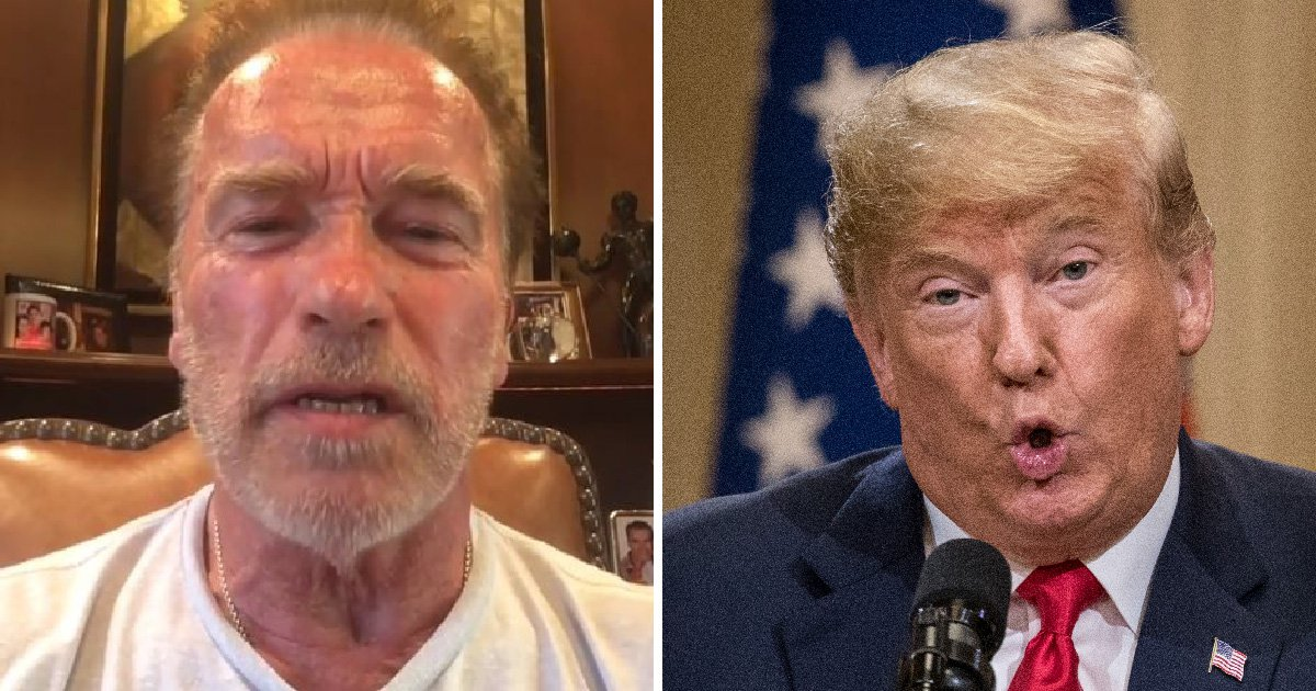 Arnold Schwarzenegger slams 'little wet noodle' Trump for 'selling out America to Russia'