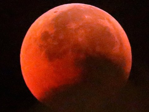 Half the globe enjoys the beauty of the blood moon but the UK is left disappointed
