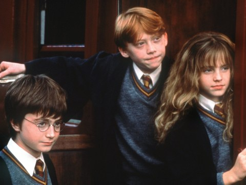 Rupert Grint almost quit his role of Ron Weasley after the fourth Harry Potter film