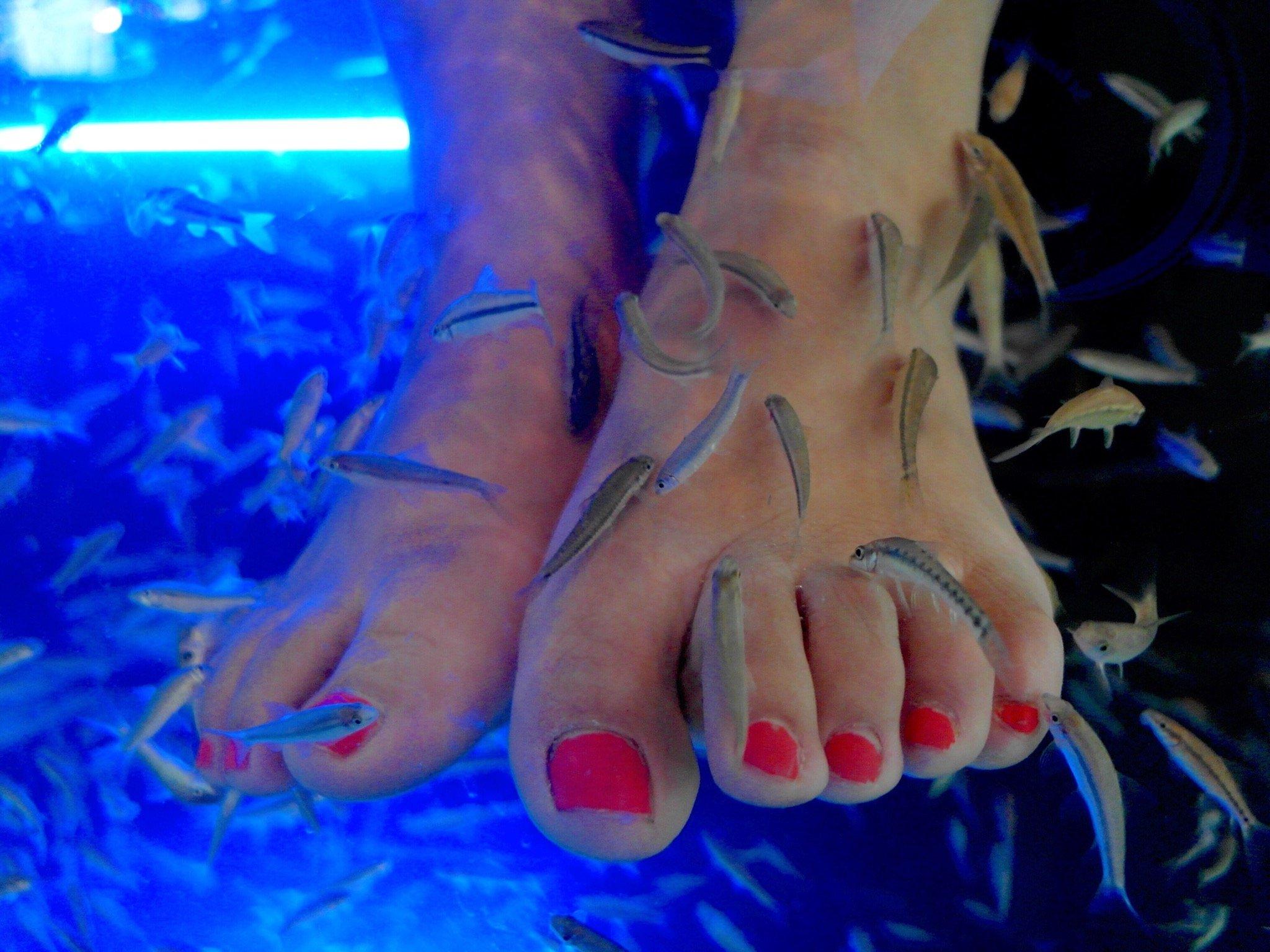 Woman loses toenails after having a trendy fish pedicure
