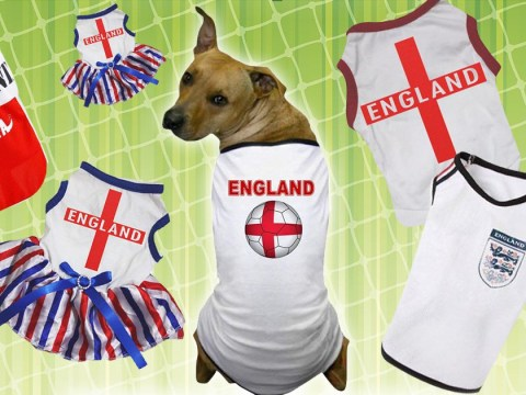 Where can I buy an Engand football shirt for my dog?