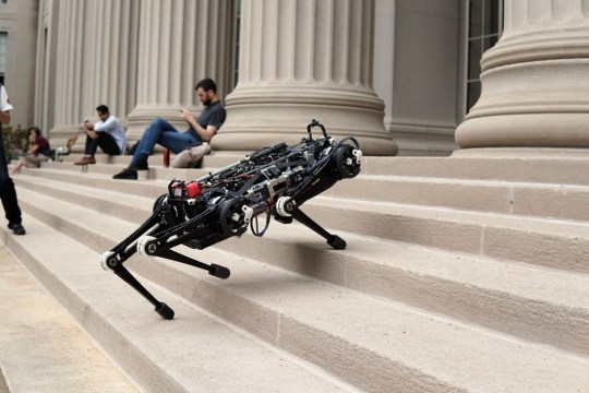 MIT's Cheetah 3 robot can now leap and gallop across rough terrain, climb a staircase littered with debris, and quickly recover its balance when suddenly yanked or shoved, all while essentially blind.
