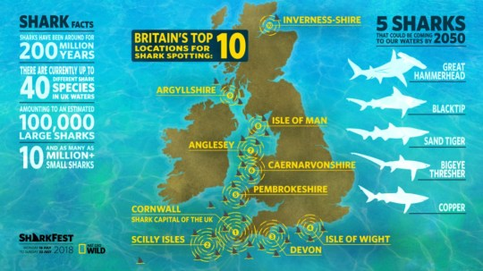 **UNDER EMBARGO UNTIL 00:01AM TUESDAY 17TH JULY 2018** A ???shark map of Britain??? illustrates the UK???s shark hotspots in new research commissioned by Nat Geo WILD to celebrate their jamwsome TV event Sharkfest, airing all this week on the channel. Hammerheads, blacktips and sand tiger sharks could be heading to UK shores in the next 30 years, with Cornwall identified as Britain's 'Shark Capital'. The new study estimates that there may be currently over 10 million small sharks and 100,000 larger sharks in British waters, as well as some 40 different species, including Thresher, Basking and Nursehound sharks. Where: Cornwall, United Kingdom When: 16 Jul 2018 Credit: Lewis Harrison-Pinder/PinPep/WENN.com **UNDER EMBARGO UNTIL 00:01AM TUESDAY 17TH JULY 2018**
