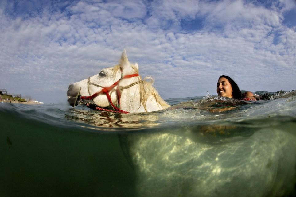 Mazz Rasoolzadeh rides out into the sea on Chasca, who they affectionately refer to as their 'sports model' because he always swims with his head right out of the water. See SWNS story SWHORSES; Stunning underwater pictures of horses swimming off the Mount?s Bay, Cornwall. Cornwall Swimming Horses offer unique horse riding experiences in which you can swim with horses.