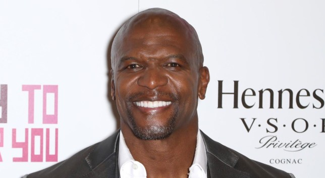 Mandatory Credit: Photo by Startraks Photo/REX/Shutterstock (9723118f) Terry Crews 'Sorry To Bother You' screening, 10th Annual BAMcinemaFest, New York, USA - 20 Jun 2018 Premiere of Sorry To Bother You During Opening of 10th Annual BAMcinemaFest
