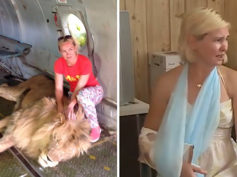 You'll never guess what happened when this woman tried to take a picture with a lion