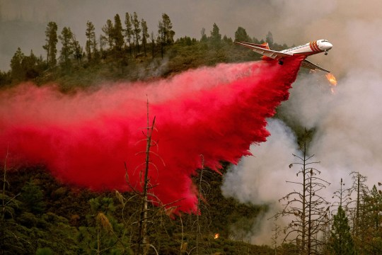 An air tanker drops retardant while battling the Ferguson fire in Stanislaus National Forest, near Yosemite National Park, California on July 21, 2018. A fire that claimed the life of one firefighter and injured two others near California's Yosemite national park has almost doubled in size in three days, authorities said Friday. The US Department of Agriculture (USDA) said the so-called Ferguson fire had spread to an area of 22,892 acres (92.6 square kilometers), and is so far only 7 percent contained. / AFP PHOTO / NOAH BERGERNOAH BERGER/AFP/Getty Images