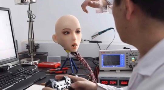 (Picture: DS Doll Robotics)