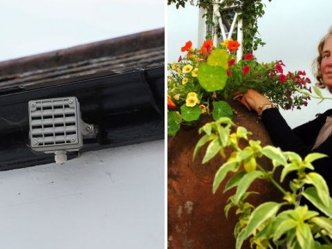 'Neighbour from hell' installs alarm that only children can hear