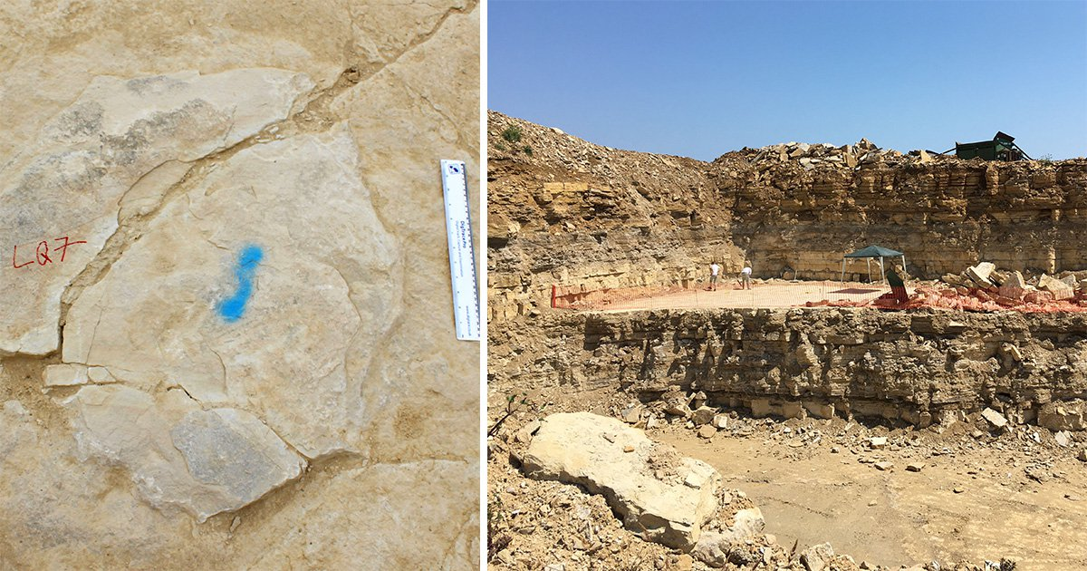 British quarry workers just found a bunch of 140-million-year-old dinosaur footprints