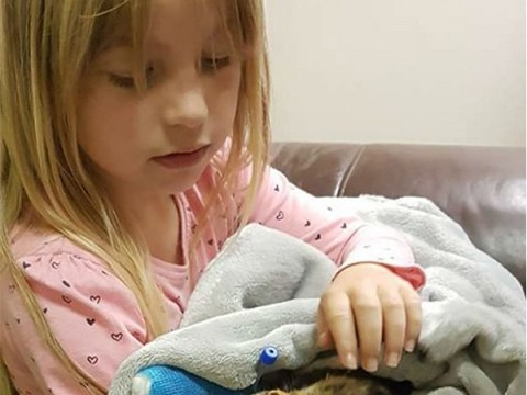 Girl, 7, says goodbye to her cat after 'evil scum' poisoned it with antifreeze