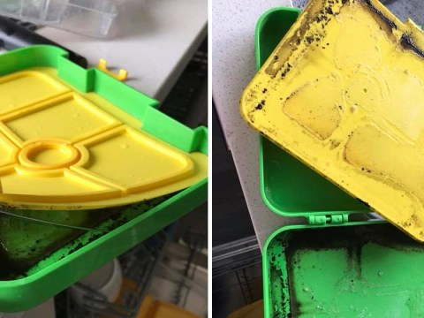 Every parent needs to see the mould hiding in this child's lunchbox