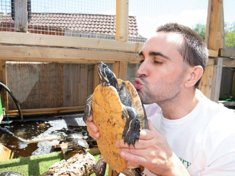 Man who's rescued over a thousand turtles is our new hero
