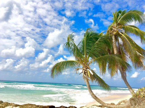 Food, rum and romance – Barbados has the perfect holiday for couples