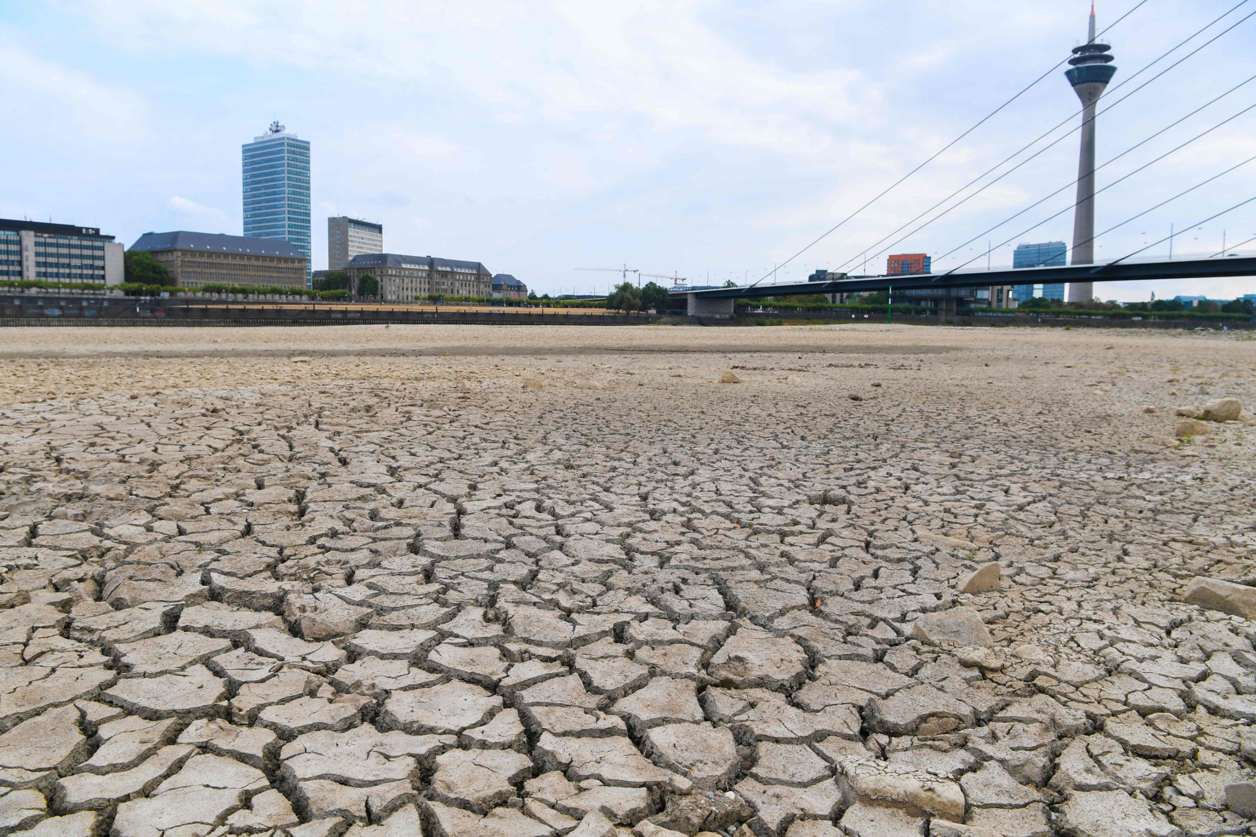 The river bed of the Rhine is dried on August 8, 2018 in Duesseldorf, western Germany, as the heatwave goes on. (Photo by Patrik STOLLARZ / AFP)PATRIK STOLLARZ/AFP/Getty Images