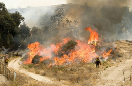 Firefighters battle the Holy Fire burning in the Cleveland National Forest in Lake Elsinore, California. 10 Aug 2018 Pictured: Firefighters battle the Holy Fire burning in the Cleveland National Forest in Lake Elsinore, California on Friday, Aug. 10, 2018. Photo credit: ZUMAPRESS.com / MEGA TheMegaAgency.com +1 888 505 6342