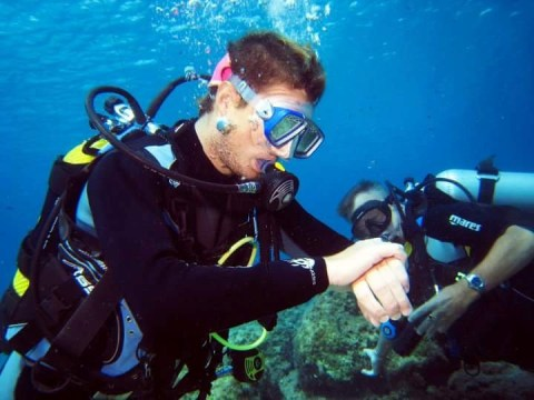 Scuba diver who broke his spine diving goes back into water to teach disabled people