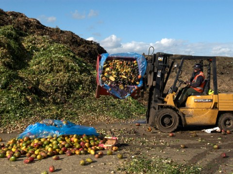 More than 50,000,000 tonnes of wonky fruit and veg is thrown away each year