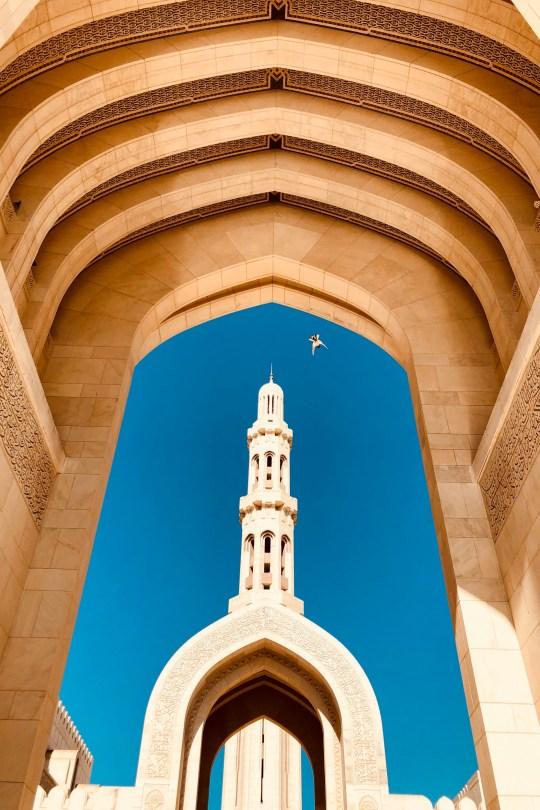 Altamash Javed Dubai, UAE @aljvd